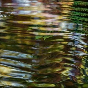 Marbled Nature - Kirsten Redshaw