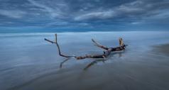 Ruben Smith - Drift Wood