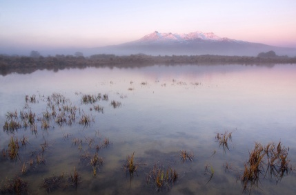 Tom Wilkinson - Ruapehu Dawn