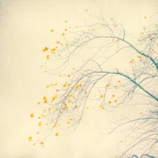 The Last Vestiges Of Autumn